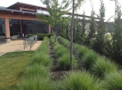 Commercial landscape design services for Commercial landscape design