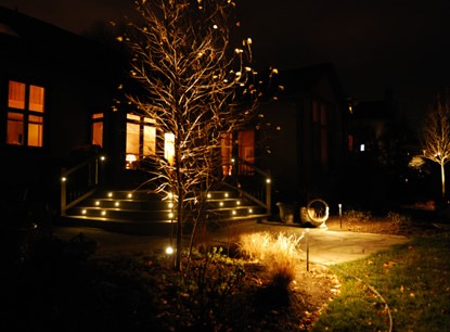 Commercial landscape lighting buck sons landscape it is important to highlight certain aspects of your landscape while leaving blank space for the imagination the picture above includes path lights aloadofball Choice Image