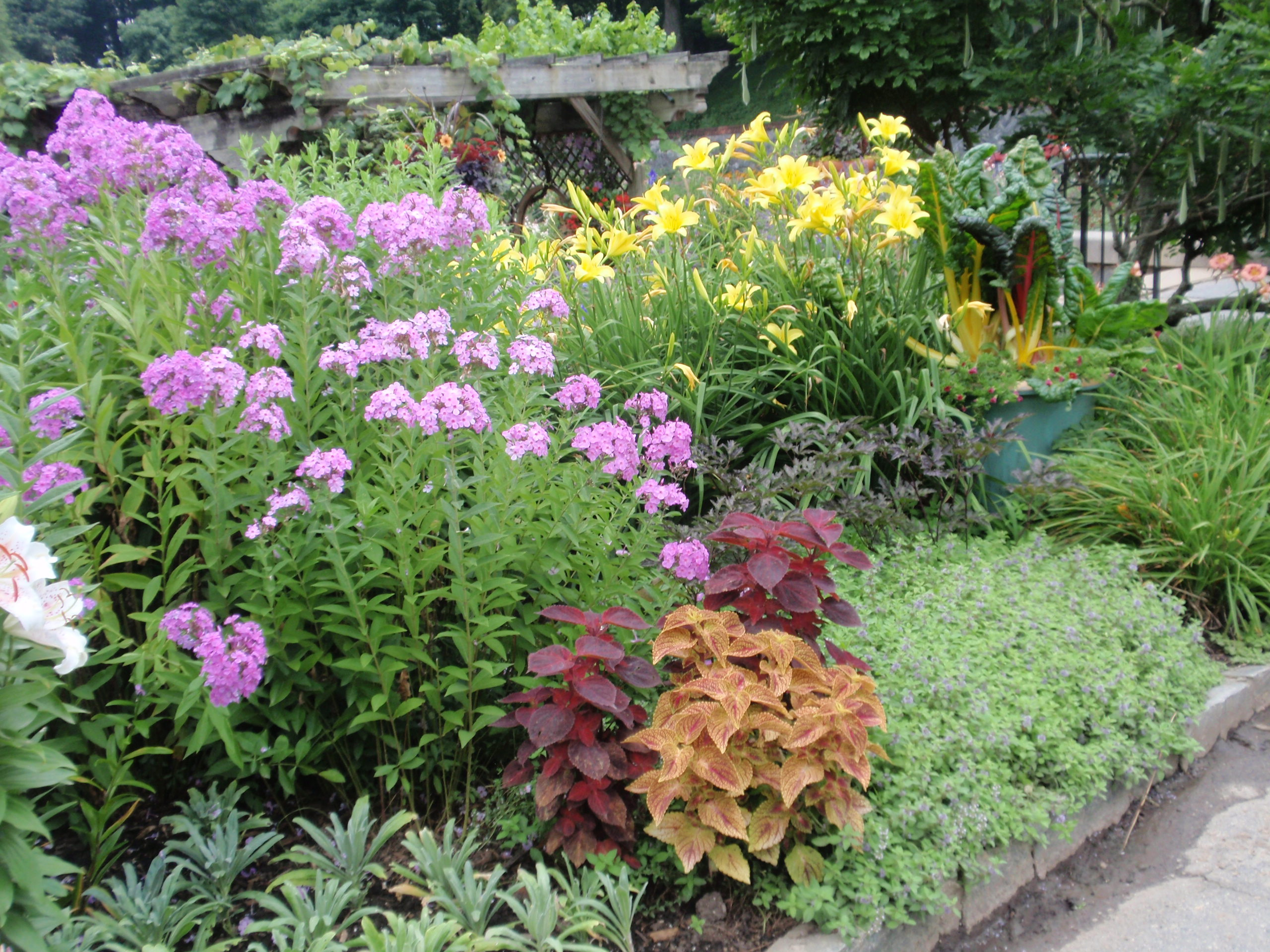How to turn your landscape in to a cutting garden buck for Flower landscape